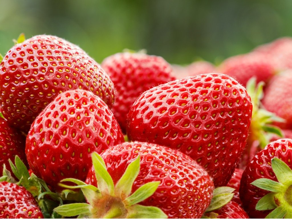 ripe sweet red strawberries as a background picture id836261924