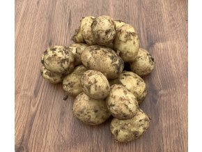 Rané brambory 'Carrera'